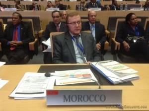 ticad, delegazione marocchina