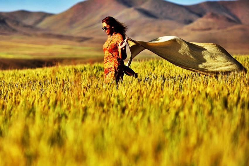 iran campagna velo Facebook