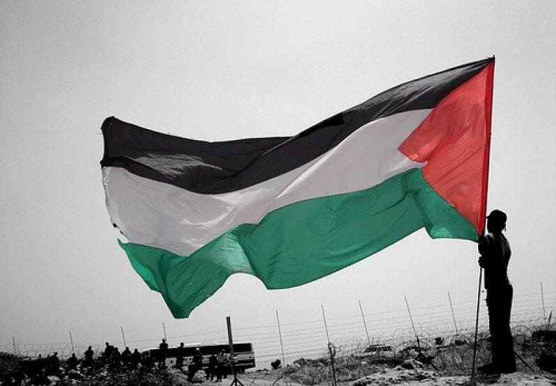 palestina bandiera paletsinese