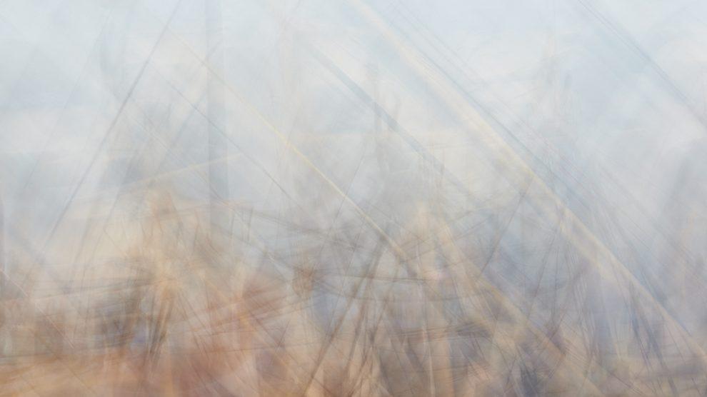 01. Veronica Gaido, Gli alberi di Mogador, da Mogador-2